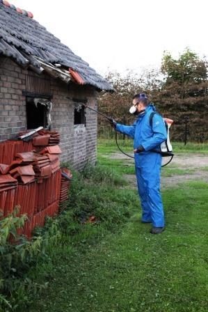 vliegende insecten bestrijden Alex Bestrijdt